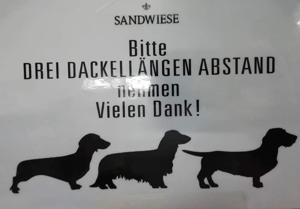 Sandwiese